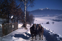 4-Tage Winter-Special (4 Ü/HP)