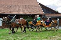 50 Jahre Nationalpark Bayerischer Wald 2020