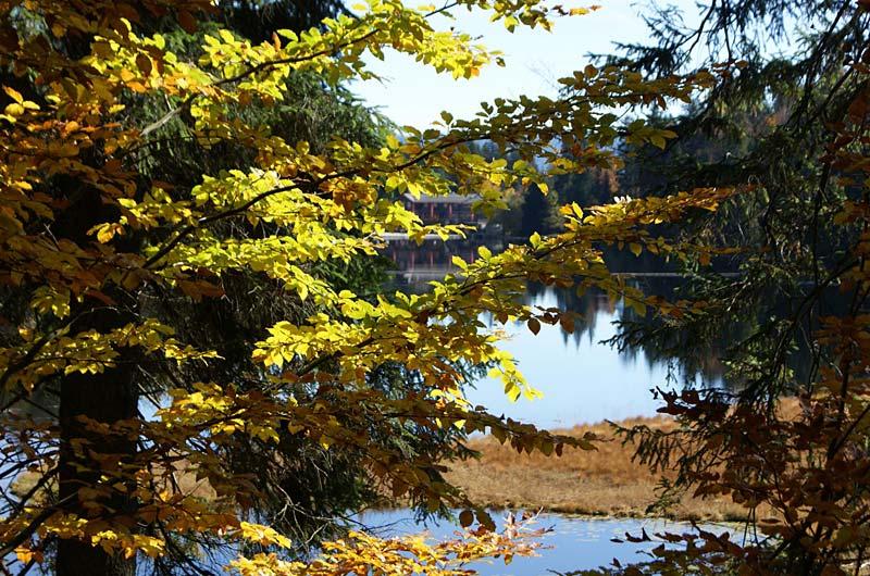 Das kleine Herbstarrangement